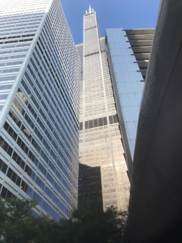 Picture of a Chicago skyscraper.